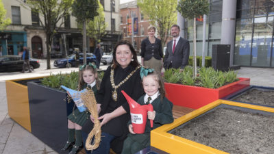 Flax Field set to flourish in the Linen Quarter
